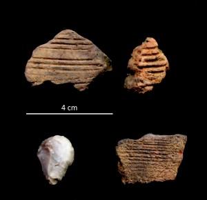Wertvolle Funde: Ein Teil der Scherben. Sie zeigen die typischen Verzierungen eisenzeitlicher Keramik und einen neolithischen Kratzer aus Feuerstein (Foto 2: 3 Scherben u. Kratzer);